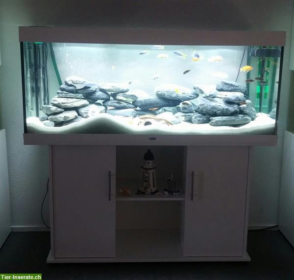 aquarium juwel rio 400 450 liter einj hrig mit unterschrank tierinserat 283225. Black Bedroom Furniture Sets. Home Design Ideas