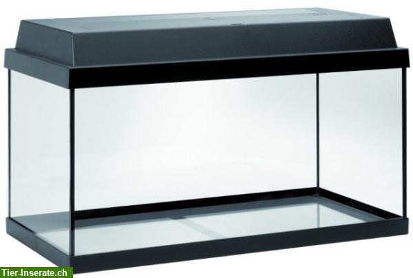 juwel aquarium 54l besonders geeignet f r zwerggarnelen tierinserat 149584. Black Bedroom Furniture Sets. Home Design Ideas