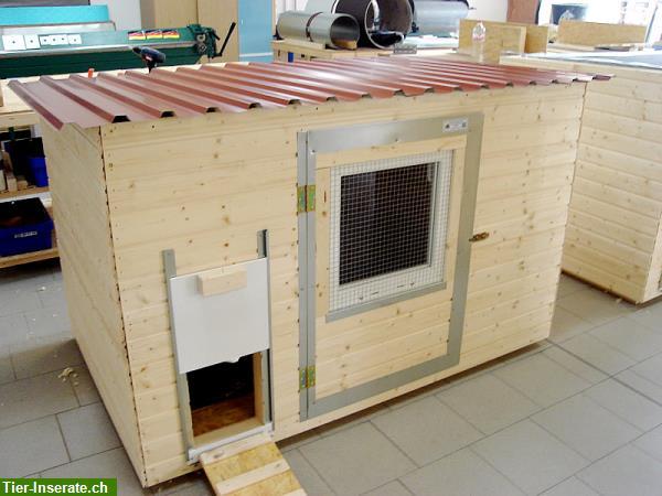 verschiedene h hner wachtel enten g nse st lle tierinserat 330768. Black Bedroom Furniture Sets. Home Design Ideas