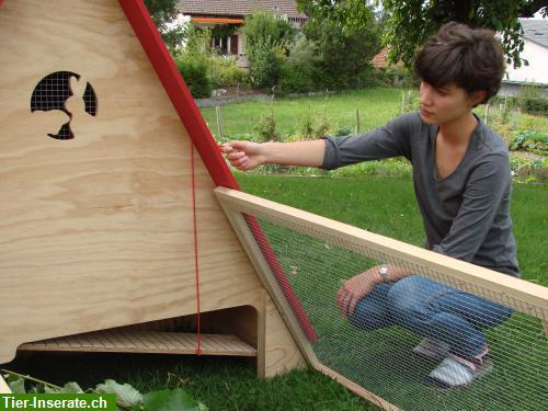 fahrbarer meerschweinchen stall kaninchen gehege zu. Black Bedroom Furniture Sets. Home Design Ideas