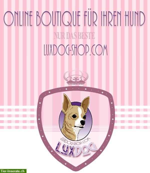 luxdog online boutique f r ihren hund tierinserat 281819. Black Bedroom Furniture Sets. Home Design Ideas