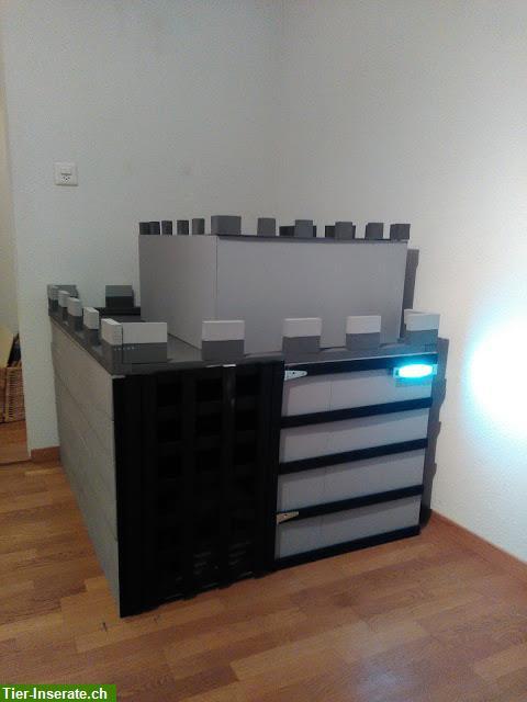 holz hundeh tte im burg style zu verkaufen tierinserat 298938. Black Bedroom Furniture Sets. Home Design Ideas