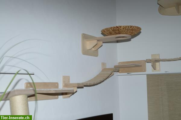 goldtatze katzenm bel f r die wandmontage sowie. Black Bedroom Furniture Sets. Home Design Ideas