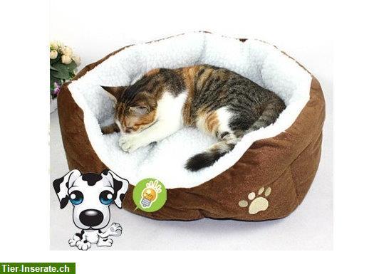 katzenbett katzenschlafplatz katzen sofa schlafplatz oder f r kleine hunde tierinserat 188073. Black Bedroom Furniture Sets. Home Design Ideas