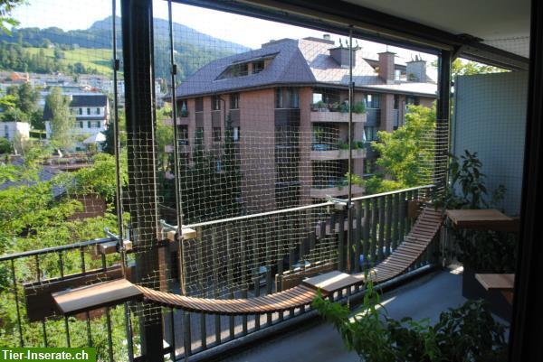 beaufiful katzenschutznetz balkon images der katzennetz spezialist montage und lieferung von. Black Bedroom Furniture Sets. Home Design Ideas