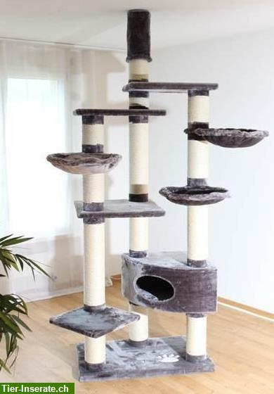 wundersch ne robuste katzenb ume f r grosse und schwere rassekatzen tierinserat 209679. Black Bedroom Furniture Sets. Home Design Ideas