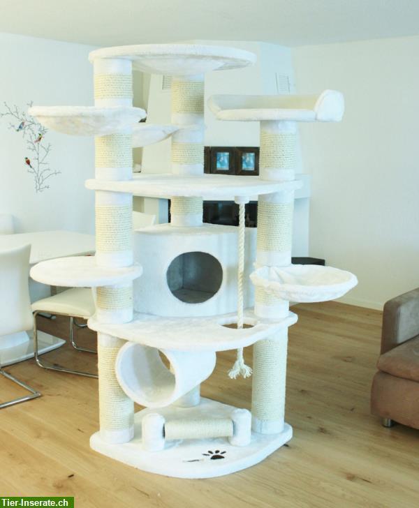 robuster katzenbaum kratzbaum beste qualit t zum bestpreis tierinserat 219096. Black Bedroom Furniture Sets. Home Design Ideas
