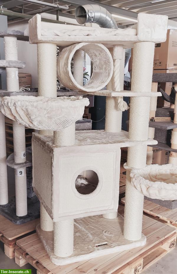katzenbaum massiv starke s ulen 16cm von pet homes ag tierinserat 219909. Black Bedroom Furniture Sets. Home Design Ideas