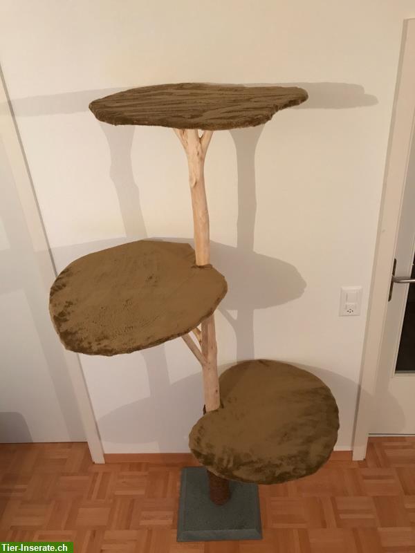 kratzbaum naturholz elegant with kratzbaum naturholz trendy bild naturholz katzenbaum aus with. Black Bedroom Furniture Sets. Home Design Ideas