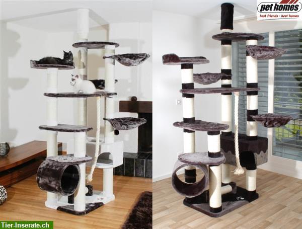 neu deckenspanner kratzbaum katzenbaum schwarz grau mit 12cm s ulen tierinserat 210329. Black Bedroom Furniture Sets. Home Design Ideas