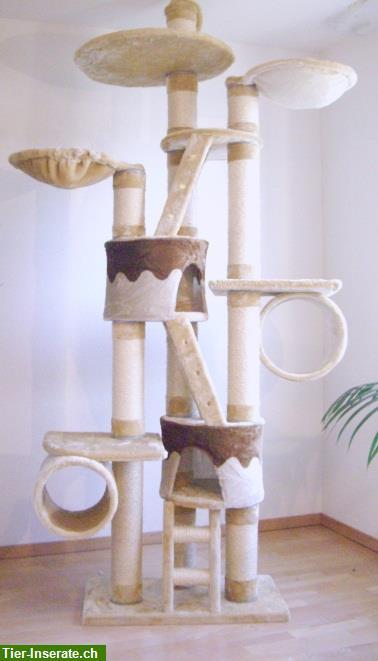 katzenbaum kratzbaum montana deluxe mit 12cm dicken sisals ulen tierinserat 212811. Black Bedroom Furniture Sets. Home Design Ideas