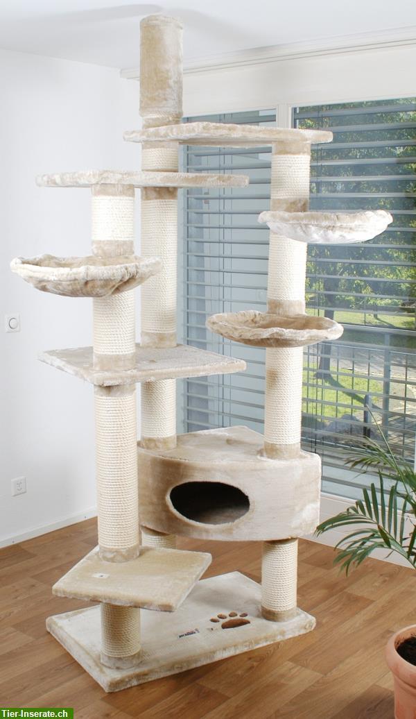 neu 60kg schwerer robuster deluxe katzenbaum classic palm mit 14cm s ulen tierinserat 210337. Black Bedroom Furniture Sets. Home Design Ideas