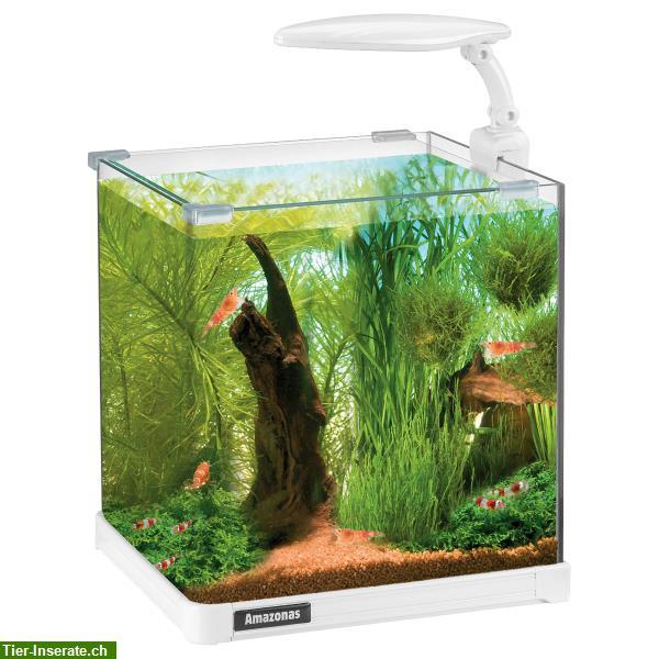 amazonas nano led aquarium 20x23x25cm 10l tierinserat 314687. Black Bedroom Furniture Sets. Home Design Ideas